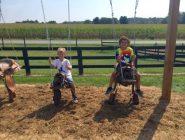 saddle-swings